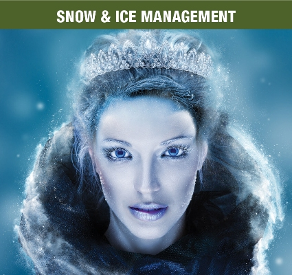 Snow and Ice Management services from DENTCO