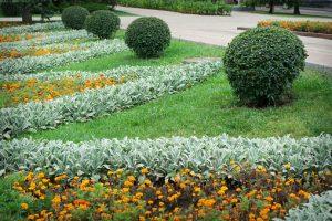 Landscaping in the garden. path in garden